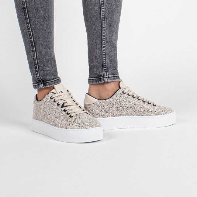 Hook Plateau Dotted Leather Vista/White